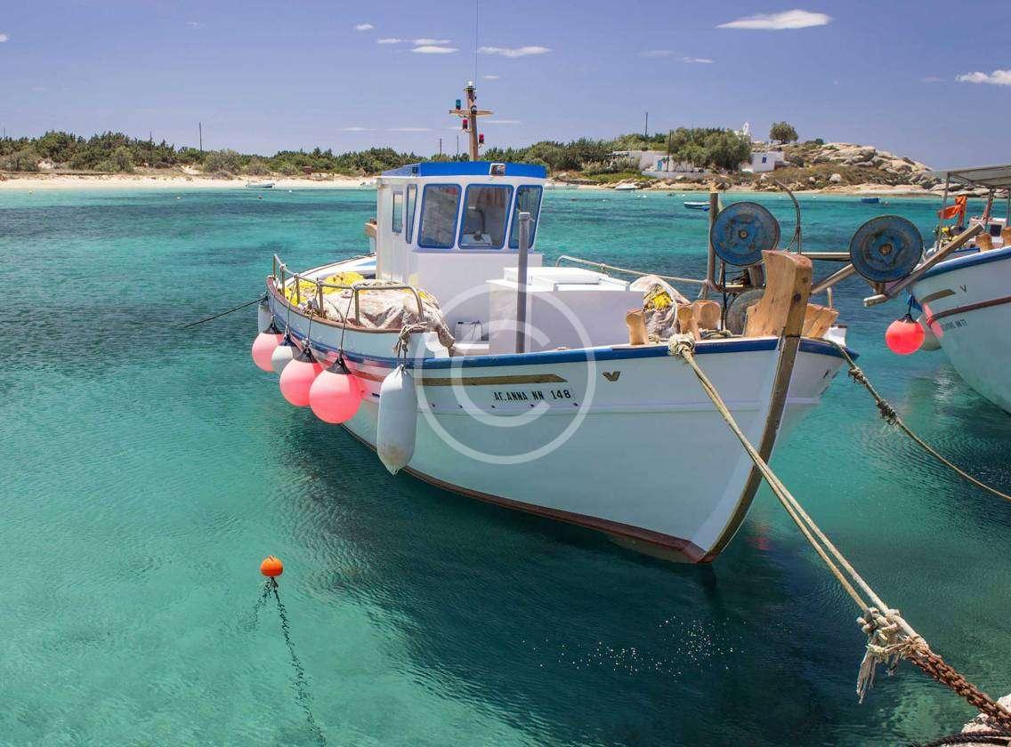 Bahama Divers Go Low